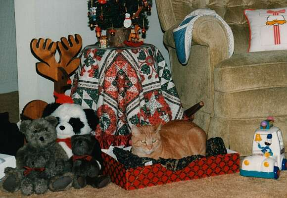 1st Christmas - Garfield